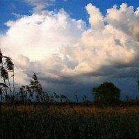 Я люблю тебя и небо ... :: Евгений Юрков