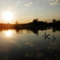 Солнце смотрящее в воду :: Зоряна