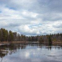 Кубена-река :: Сергей Смирнов