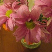Нежность хризантем. :: Valentina