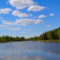 Облака как белые барашки :: Милешкин Владимир Алексеевич