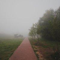 туман. :: Анастасия Фролова