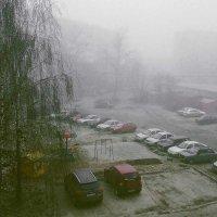 Туманное утро. :: Владимир Безгрешнов