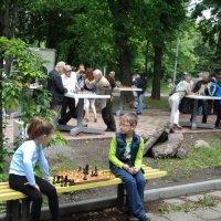 В шахматах каждая пешка мечтает стать королевой... :: Алекс Аро Аро
