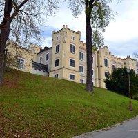 Замковые постройки :: Ольга