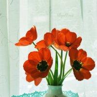 на окне :: ulya1727 ВК