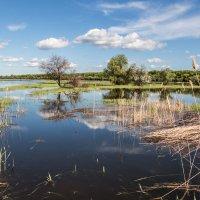 Астраханские разливы :: vadim