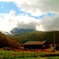 лето на севере 4 :: azyzas