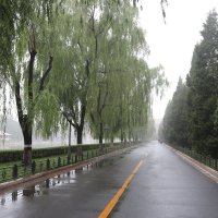 Пекин, Утро после додя :: Сергей Смоляр