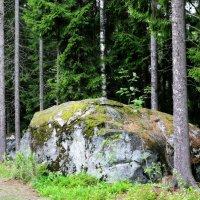 Финские камни :: Евгения К