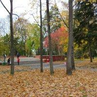 Осень  в  Ивано - Франковском  парке :: Андрей  Васильевич Коляскин