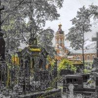 Никольское кладбище.. :: tipchik