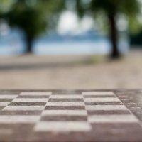 Шахматная доска :: Artem Zelenyuk