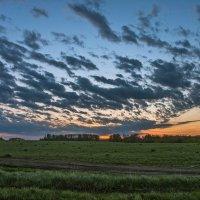 Ранним утром в чистом поле :: cfysx
