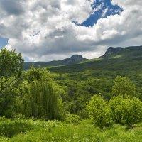 Май в горном Крыму :: Игорь Кузьмин