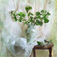 Лучше нету того цвету, когда яблоня цветет... :: Валентина Колова
