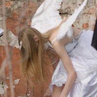Ангел :: Ольга Горбачева