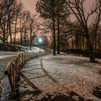 Ночной парк :: Алёнка Шапран