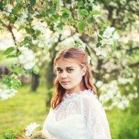 Цветущая весна :: Марина Шавловская