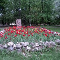 В центральном парке города Люберцы. :: Ольга Кривых