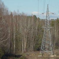 высокие вольты...в апреле... :: Михаил Жуковский