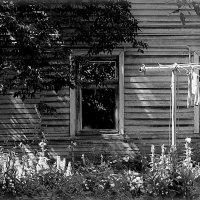 Солнечный день :: Надежда Бахолдина