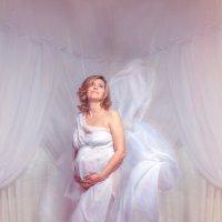 Беременность всегда прекрасна! :: Андрей Володин