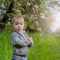 Ух ты! Весна! :: Ирина Белоусова