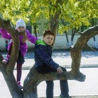 Племя младое (2) :: Дмитрий Костоусов