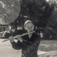 Играй, музыкант! :: Дмитрий Костоусов