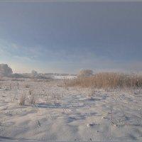 Зимние прогулки :: Сергей Литвинов