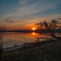 Выткался над озером... :: Сергей Цветков