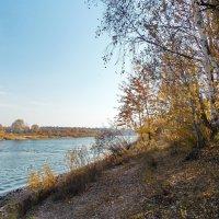 Река Сож :: Павел Карако
