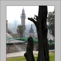 Старый порт Яффо, Израиль :: Борис Херсонский