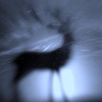 Тень и свет :: Татьяна Кадочникова