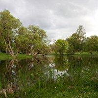 На реке у дома, в котором родился Я.Купала :: Марина Симакова