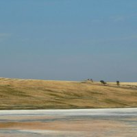 по дороге в Давидо-Гареджийский монастырь :: Alla Swan
