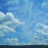 И небо! Бескрайнее молдавское небо!.. :: Марина Цуркан