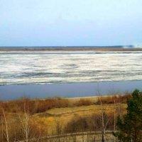 Ледоход на реке Лене. :: Елена