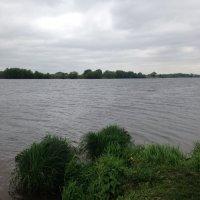 Москва река :: Светлана Ященко