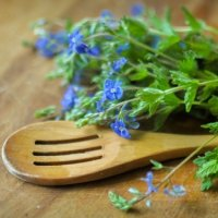 голубые цветы :: Photo Tasja