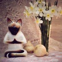 медитация :: Тася Тыжфотографиня