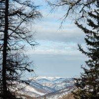 Далёкие горы :: Алексей (АСкет) Степанов