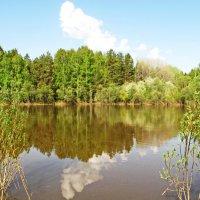 Весенним днём у реки :: Юрий Кузмицкас