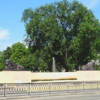 Львы и фонтан... :: Тамара (st.tamara)