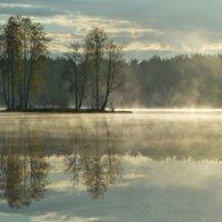 Пейзаж с островом.... :: Юрий Цыплятников