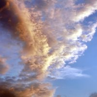 вечерний облачный закат :: Андрей Дружинин