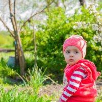 Дочурка :: levonchik stepanyan