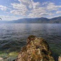 Весенний полдень на Телецком озере :: Владимир Колесников