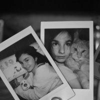 Главное-семья  :: Nastasia Nikitina